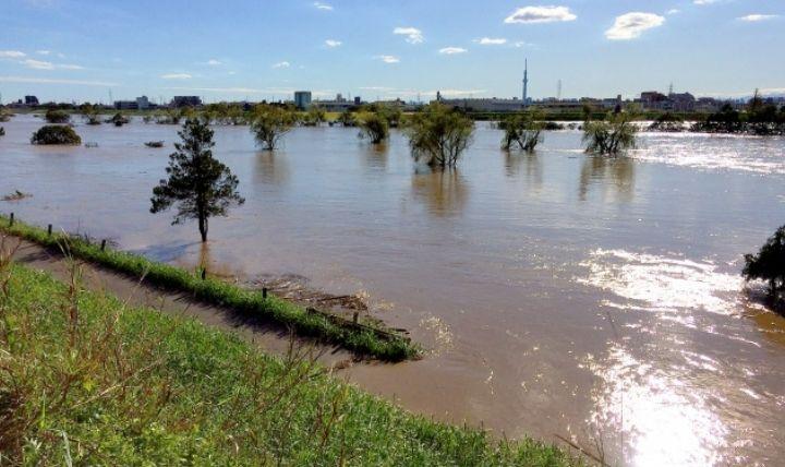 溢水(いっすい)した河川敷